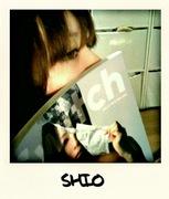 Shio散歩