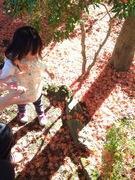 心の虹色クリエイト@妖精の森