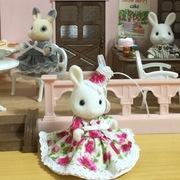 白うさぎのカフェテラス