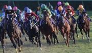 Baken's blog~毎日競馬
