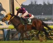 競馬や懸賞を考察するブログ