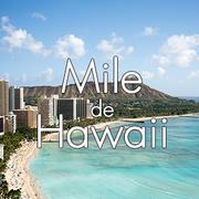 マイルでハワイさんのプロフィール