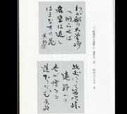 冬日和(tankas-fuyubiyori)