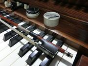オルガンとバイオリンの日々