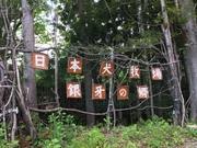 日本犬牧場~銀牙の郷より~