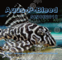 Aqua-p-Bleed