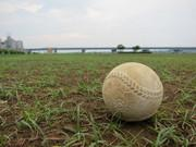 働く母の(ほぼ塾なし)中学受験と少年野球