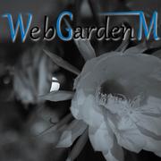 奈良Web制作サポート|WebGardenMウェブガーデンM