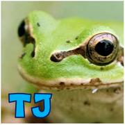 TJさんのプロフィール