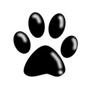 最新ドッグラン情報 Dog-run.club
