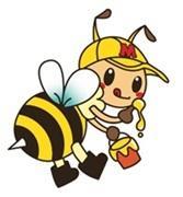 HONEYとミツバチとわたし/会津のハチミツ