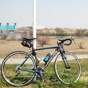 江戸川と自転車とオッサンのダイエット