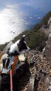 ひろいびと『三重県の山、犬連れ清掃登山記録』
