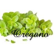 ハンドメイドアクセサリー Oregano -オレガノ -