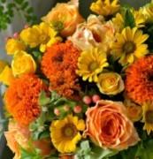 花色〜あなたの好きなお花屋さんになりたい〜