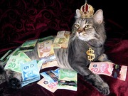 """たった1万円から始める""""幸せ""""ビットコイン生活!"""