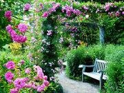 蓼科高原 バラクラ イングリッシュ ガーデン