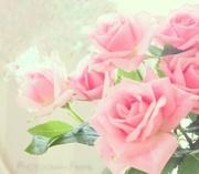 rose-jewelryさんのプロフィール