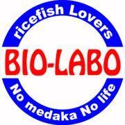 めだか屋BIO-LABOさんのプロフィール