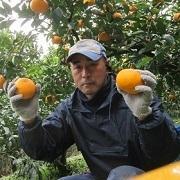 ユウギボウシの柑橘栽培日記