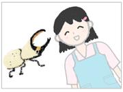 カブトムシとクワガタ