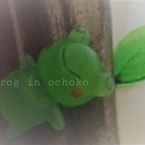 お猪口の中の蛙