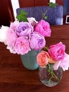 彩りご飯と猫と花