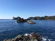 sdパパの大分磯釣り、たまに北九州チヌ釣りブログ