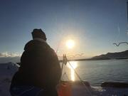 釣りアマグングン成長日記