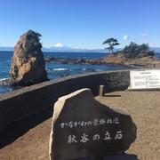 わいわい日記 in 横須賀