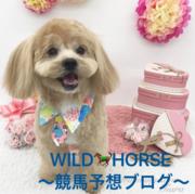 WILD HORSE〜競馬予想ブログ〜