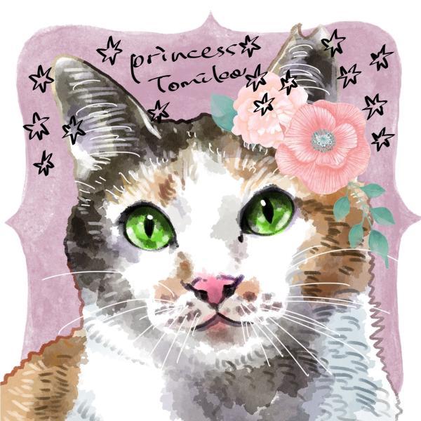 生野区猫多頭崩壊支援の会さんのプロフィール