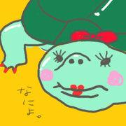 kamemiさんのプロフィール