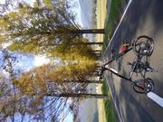折り畳み自転車のストライダーで、古い町並み散策ポタさんのプロフィール