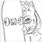 スケボーに乗った猫