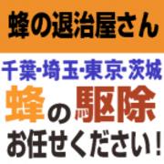 asahina0105さんのプロフィール