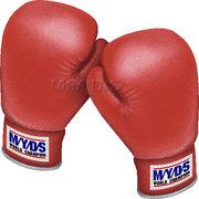 ボクシングを100倍楽しくみる方法