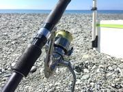 す〜さんの海釣り釣行記&ウズラとアクア