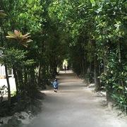 地元民が教える沖縄観光お散歩情報