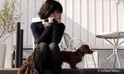 犬と暮らすひとさじのシンプルなアイデア