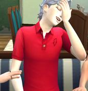 Sims4*作って眺めてほくそ笑む