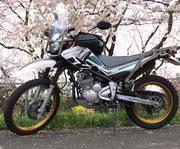 湘南バイクでお出かけ生活