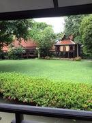 家庭菜園と珈琲
