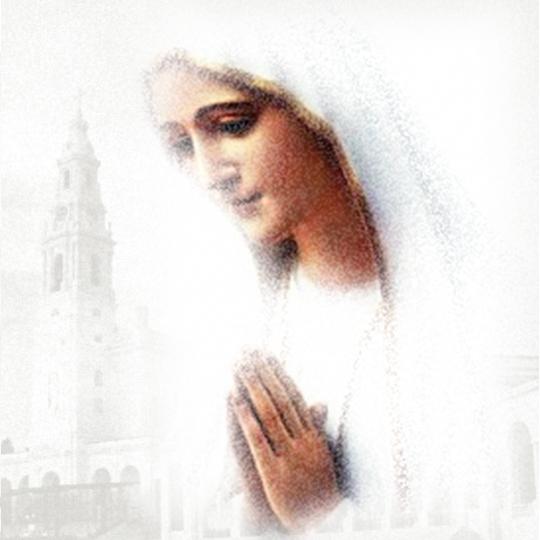 ファチマの聖母の会・プロライフ