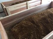 東京西部の酵素風呂  酵素練馬スタッフブログ