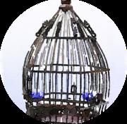 Bluebird Story