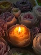 howarito.candleさんのプロフィール