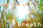 breath〜算命学・占星術占いと心理カウンセリング〜