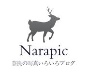 Narapic 奈良の写真いろいろブログ