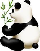 カンフー・パンダのトレーニング日記
